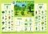 Литература для педагогов ДОУ «Растения  (плакат)»